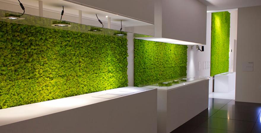 Зеленая стена в современном дизайне дома